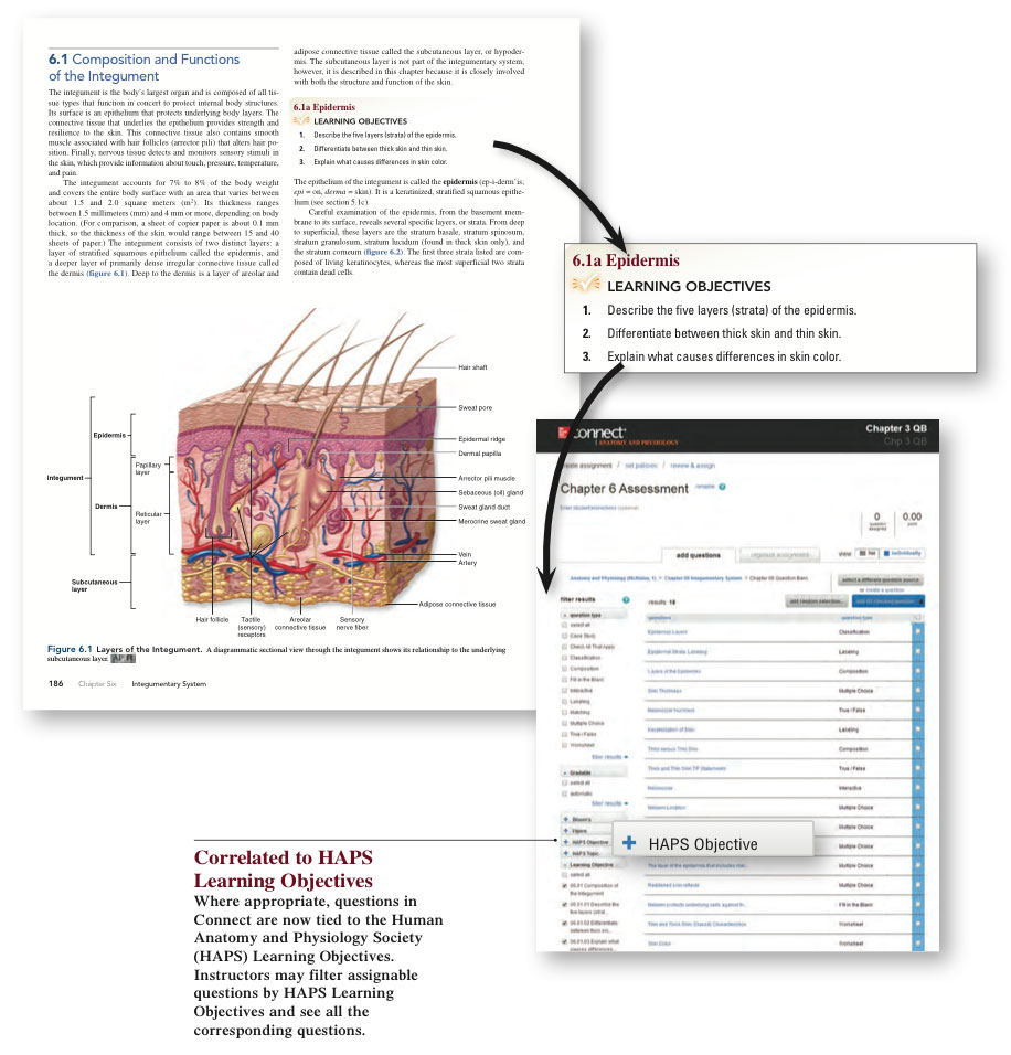 Connect Mcgraw Hill Anatomy
