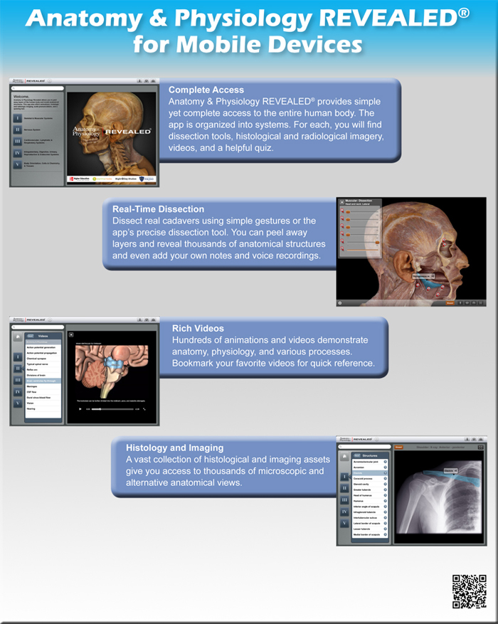 Essentials of Anatomy & Physiology | McGraw-Hill Education